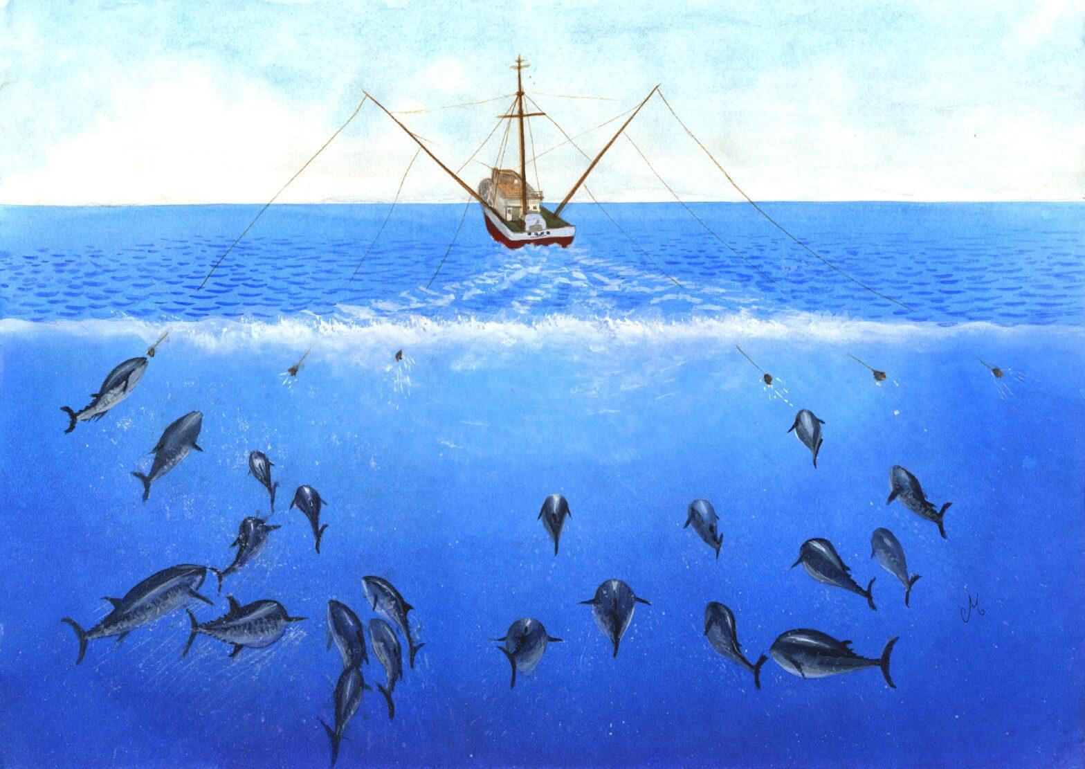 Ein Fischkutter zieht lange Trolling-Leinen hinter sich her, unter Wasser sammeln sich Thunfische, die in Begriff sind anzubeißen